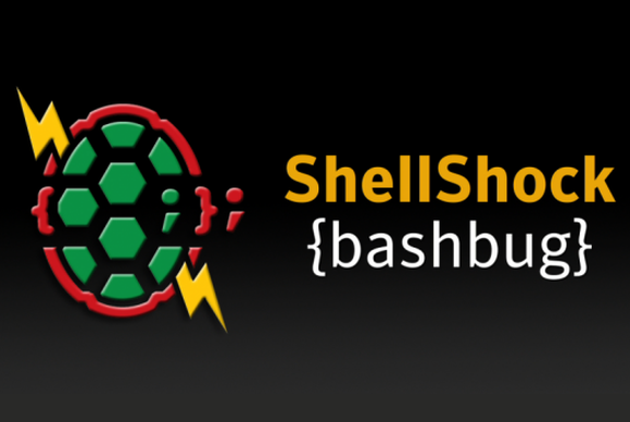 shellshock-bug-100457107-large